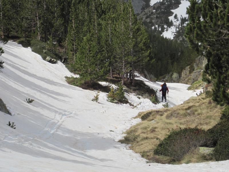Apurando la nieve de mayo