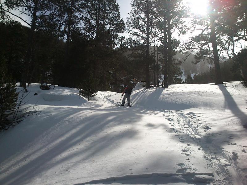 Primeros metros por el bosque de Sant Pierre dels Forcats
