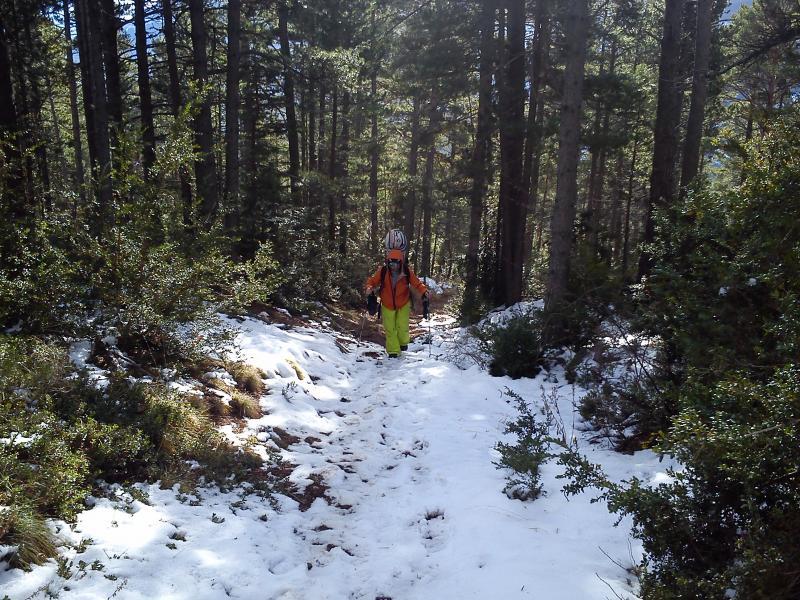 Nieve discontinua
