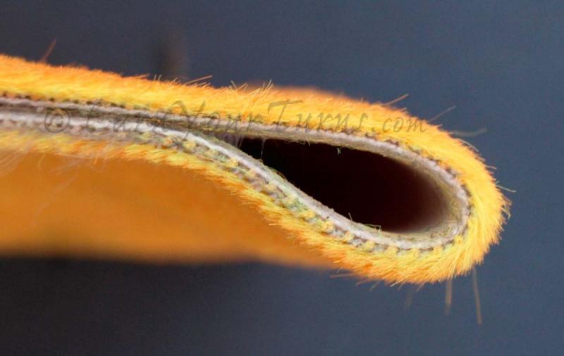 Detalle de las fibras
