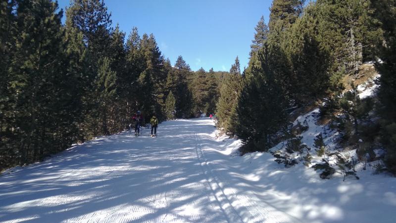 Pista de esquí de fondo