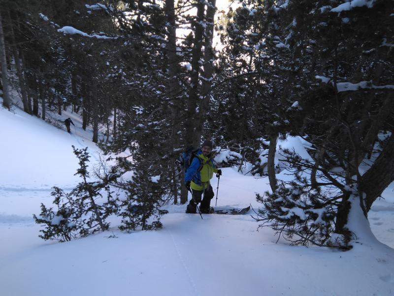 Primeras lazadas en el bosque